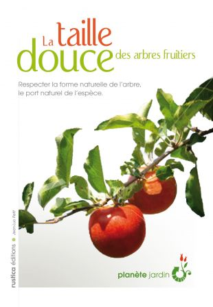 taille douce fruitiers